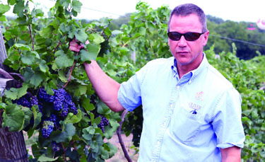 Visitors can tour Bill Oliver's Creekbend Vineyards Saturday afternoon